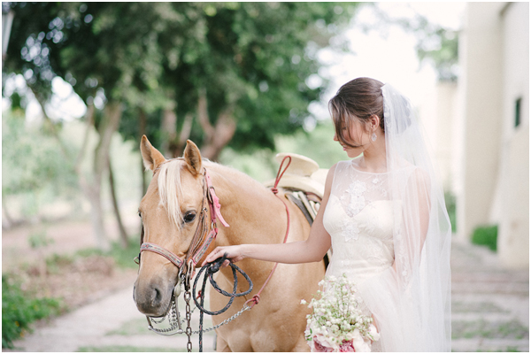 Horse Bride Stefanie Kapra Photography Fine Art Wedding Photography