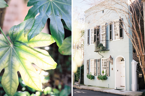 Charleston on Contax - pretty | Stefanie Kapra Photo | Wedding and Destinations