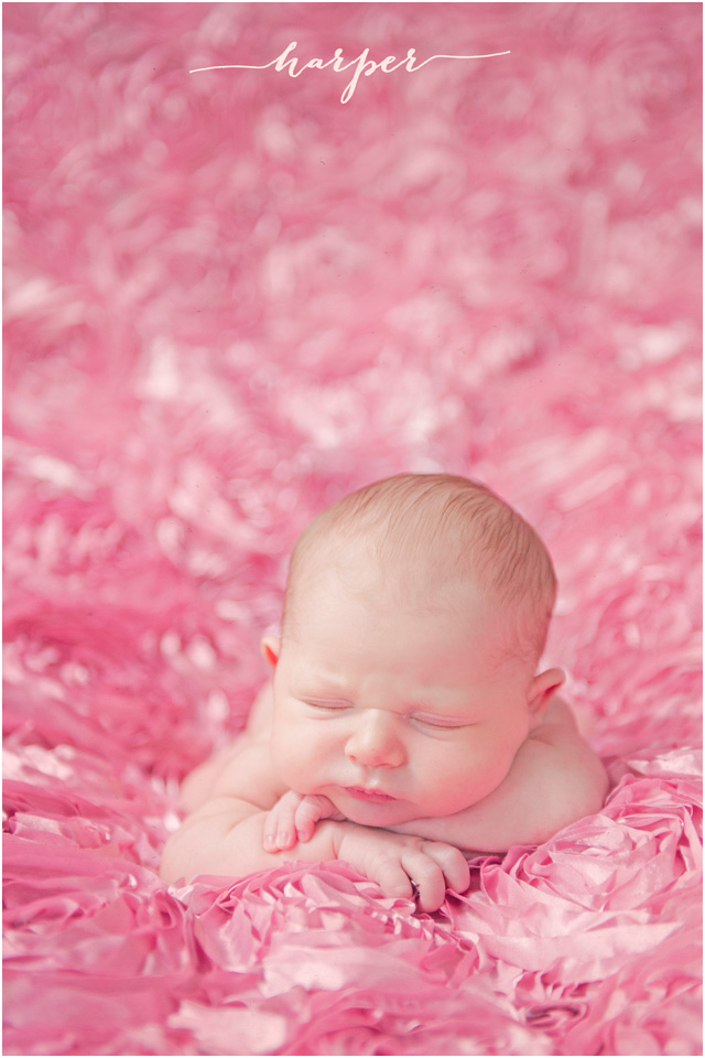 baby girl - newborn photographer Stefanie Kapra Photo - Fine Art Photography CT, New York, SC