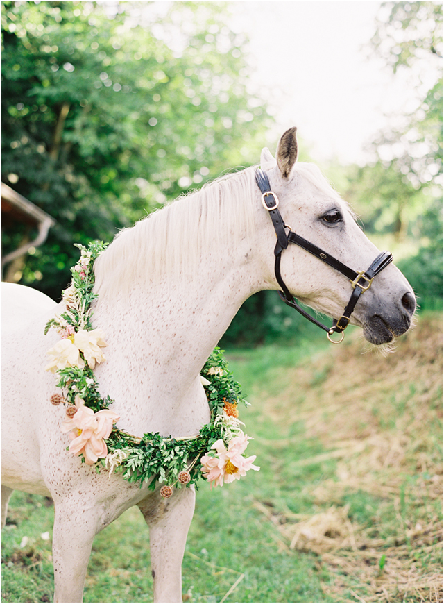 Stefanie Kapra Photo - equestrian wedding - Destination wedding film photographer contax